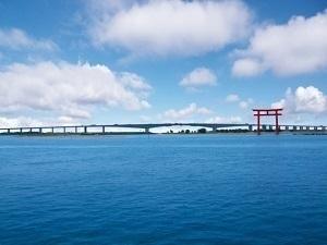 静岡県の有名なもの7