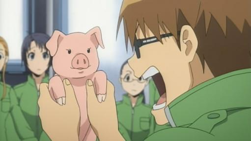 【動画】ツイッター「日本の大手豚肉メーカーでは、子豚とその母豚が恐ろしい虐待を受けています! 貴方はこれを見ても豚さんを食べられますか?」