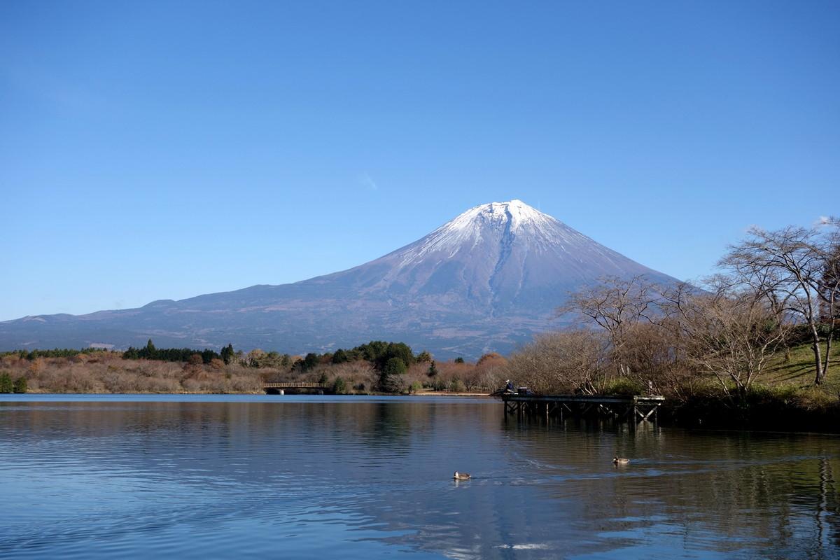 富士山田貫湖①