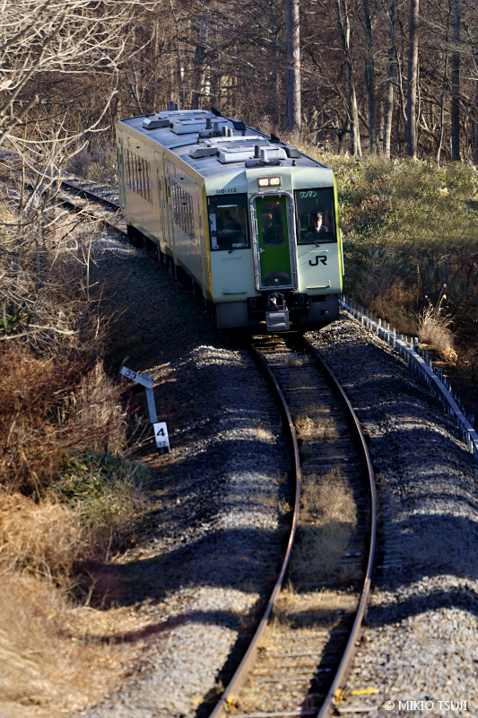 絶景探しの旅 - 絶景写真No.1553 森の列車 (小海線/山梨県 北杜市)