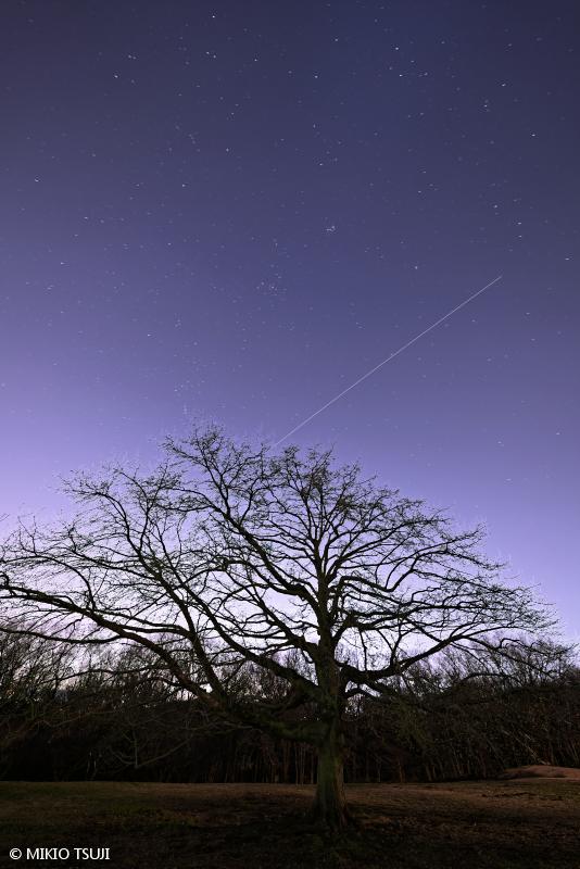 絶景探しの旅 - 絶景写真No.1585 きぼう 国際宇宙ステーション ISS の流れる空 (小宮公園/東京都 八王子市)