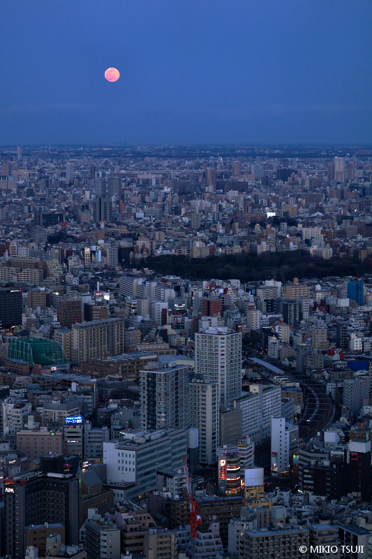絶景探しの旅 - 絶景写真No.1606 東京の街に昇るスノームーン (東京都 豊島区)