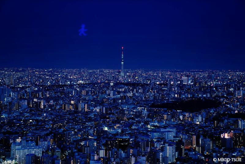 絶景探しの旅 - 絶景写真No.1612 東京スカイウォーカー (東京都 豊島区)