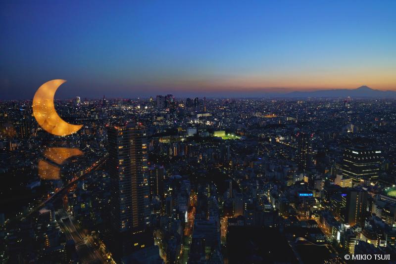 絶景探しの旅 - 絶景写真No.1613 ムーンライトシティ (東京都 豊島区)