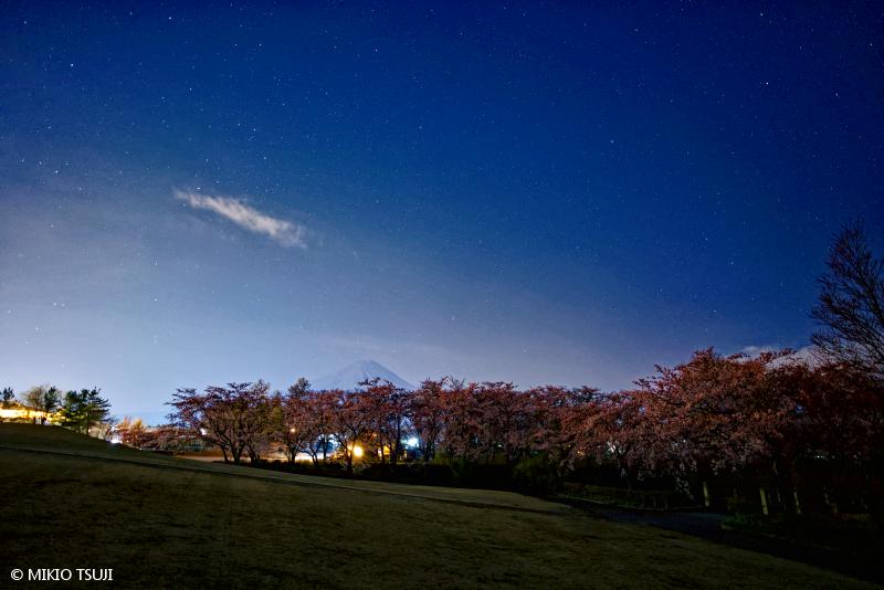 絶景探しの旅 - 絶景写真No.1652 富士山の見える桜の公園 (八木崎公園/山梨県 富士河口湖町)