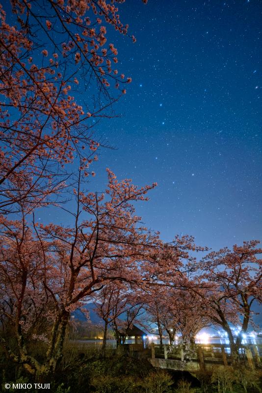 絶景探しの旅 - 絶景写真No.1653 桜と北斗七星 (八木崎公園/山梨県 富士河口湖町)