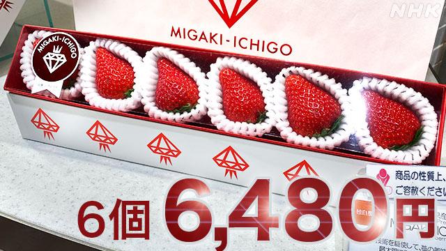 【メディア掲載】NHK NEWS WEB